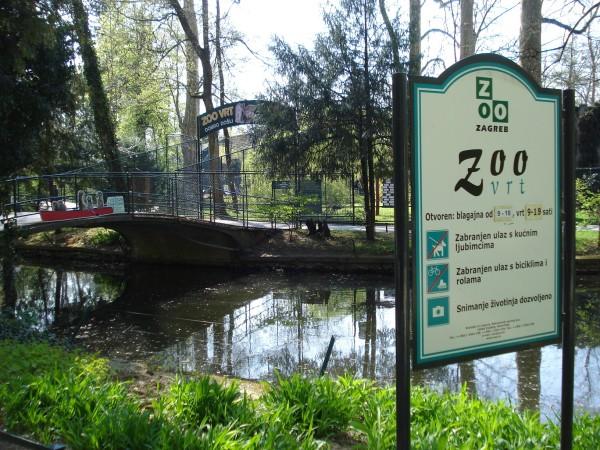 Sjajne Novosti Iz Zoo Vrta Novi Stanari Odusevit Ce Sve Posjetitelje Zagreb Info