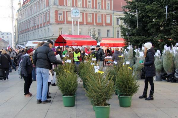 Eko božićno drvce