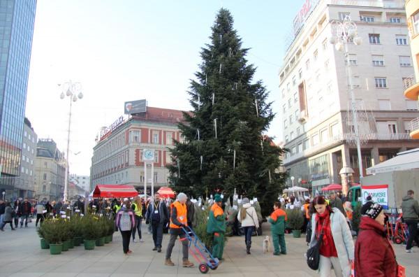 Eko božićna drvca