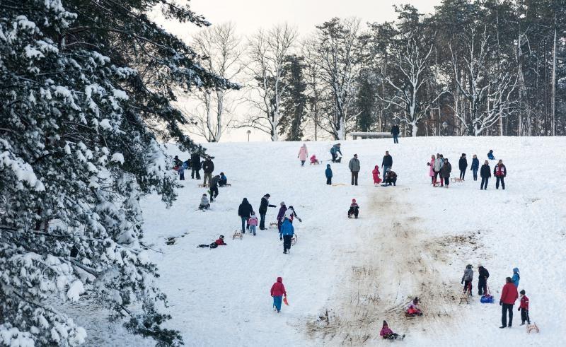 25.01.2014., Cmrok, Zagreb - Uzivanje u zimskim radostima na gradskim lokacijama, sanjkanje. Photo: Nina Djurdjevic/PIXSELL