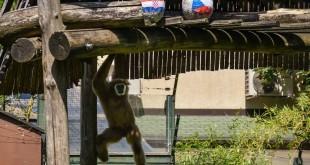 Zoo Zagreb