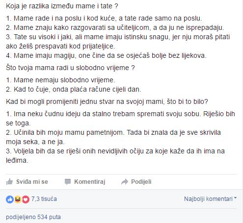 Ella Dvornik/ Screenshot Facebook