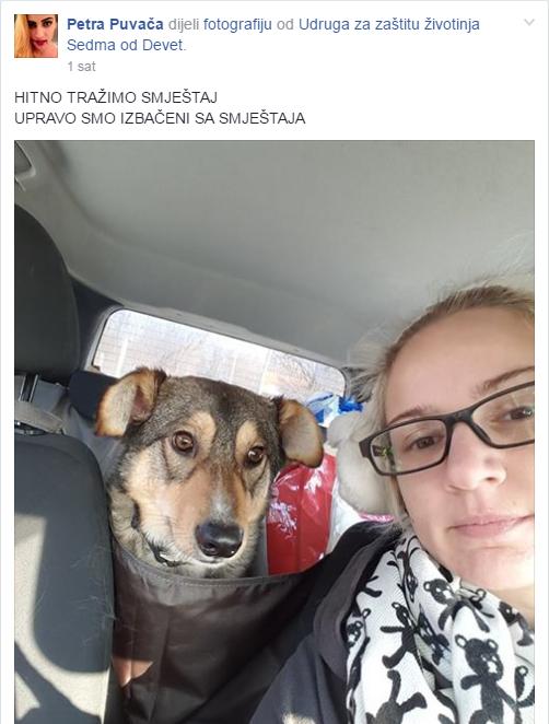 Facebook/ Zakaj volim pese