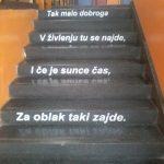 FOTO: Maja Pikija / GAJNICE jučer danas sutra