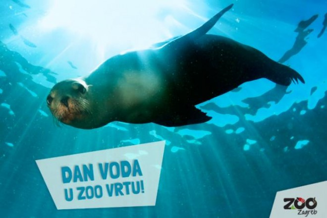 zoo-vrt-dan-voda