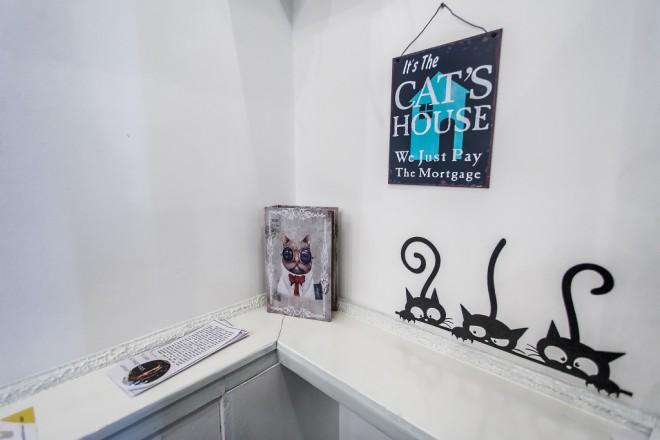 cat-caffe-23112017-05