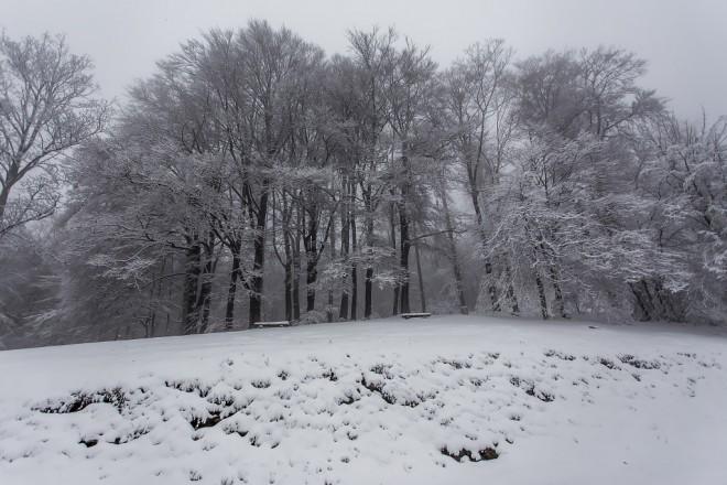 snijeg-medvednica-13112017-16